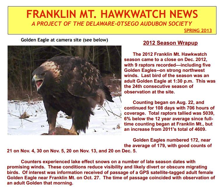 HawkwatchNewsImage