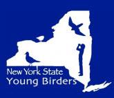 ybc_logo
