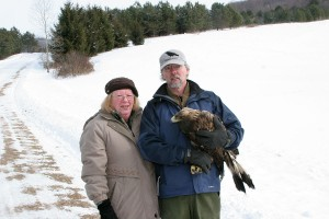 DOAS Board Members, Julia Gregory and Tom Salo with Telemetered Golden Eagle