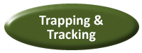 button_Trapping_Tracking