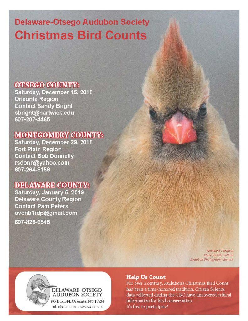 Audubon Christmas Bird Count 2019 Delaware County Region Christmas Bird Count – Jan. 2019 | Delaware